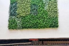 landscape-After-installing-GreenTurf-Artificial-Green-Wall