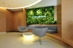 landscape-Artificial-Green-Wall-at-Reception
